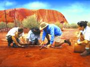 Ayers Rock Guided Tours