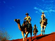 Camel Ride in the Simpson Desert